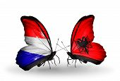 stock photo of albania  - Two butterflies with flags on wings as symbol of relations Holland and Albania - JPG