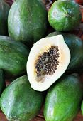 picture of papaya fruit  - Green Papaya fruit at the Hoi An market in Vietnam. This large tropical fruit is popular throughout Asia in two varieties - green and yellow has a lovely taste and is served in slices or as a juice. ** Note: Shallow depth of field - JPG