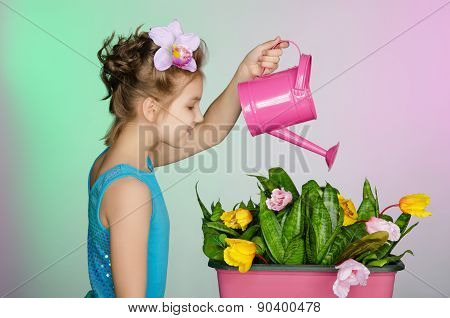 Girl Watering  Beautiful Flowers