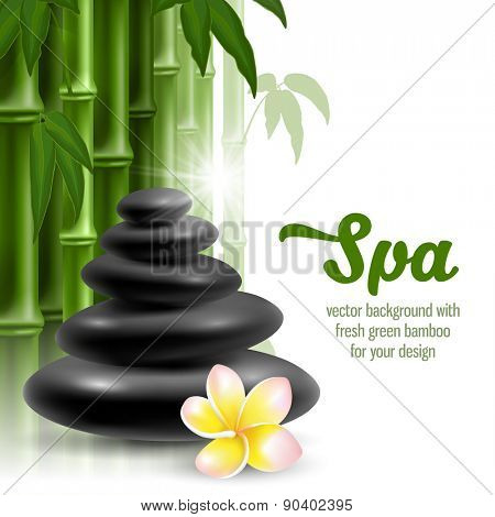 Vector card on spa theme with bamboo, massage stone, frangipani on white background.