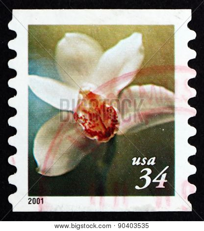 Postage Stamp Usa 2000 Flower