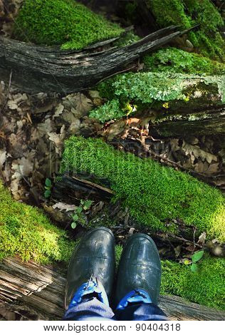 Rubber Boots On The Moss Background