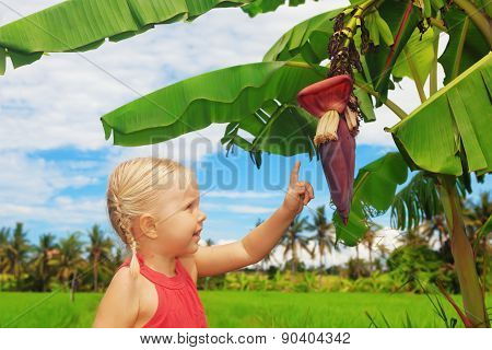 Smiling Child Exploring The Nature - Banana Flower And Fruits