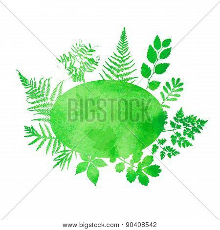 Summer watercolor background with green grass and ferns.