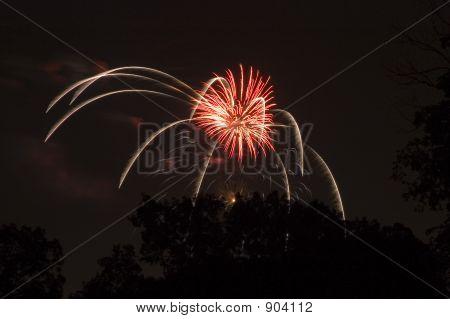 Spider Firework Burst
