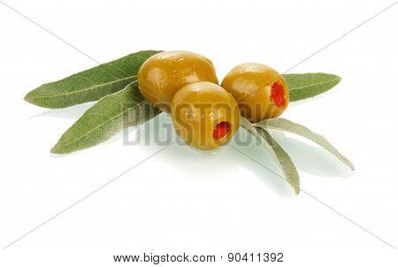 Olives on twig