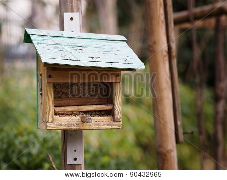The little birdhouse in the park