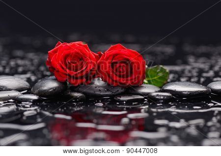 Two red rose with therapy stones