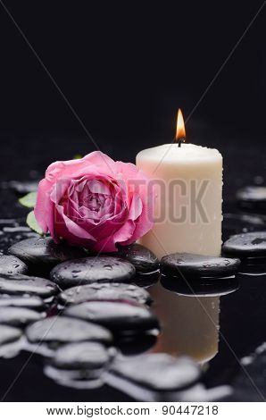 Still life with pink rose and candle on stones