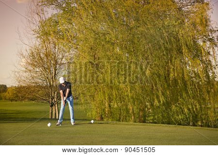 Male golfer preparing to tee-off ball, with beautiful tree in background.