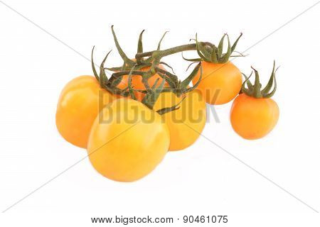 Homegrown Yellow Tomato On Vine Isolated
