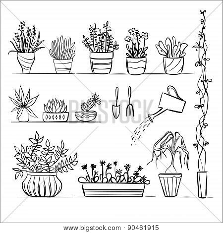 Pot plants and tools sketch