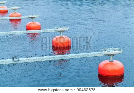 Red Mooring Buoys In A Row Floating On Water