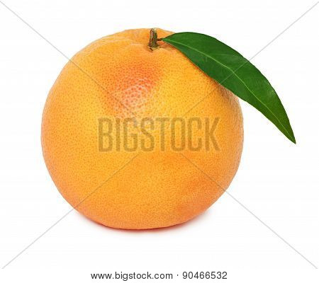 One Whole Ripe Grapefruit With Green Leaf (isolated)
