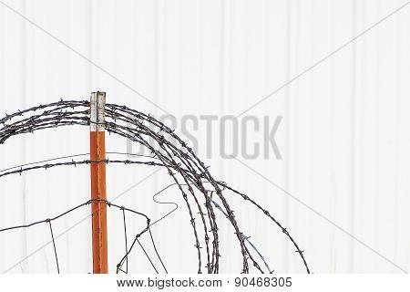 Barb Wire Lasso