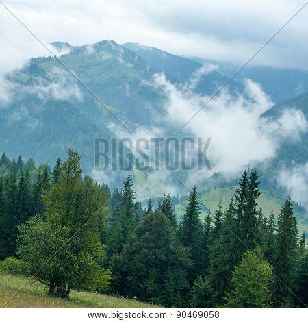 Foggy Morning Landscape Of Carpathian Mountains. Ukraine