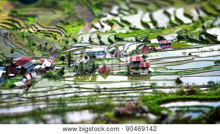 Rice Terraces And Village Houses. Banaue, Philippines. Tilt Shift