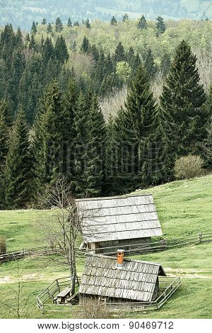 Idyllic Dairy Farms On Alpine Meadow