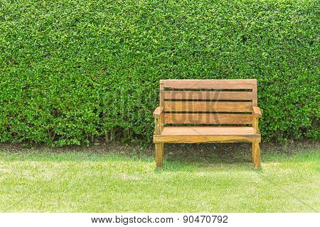 Wooden Chair On Green Plant Wall Background