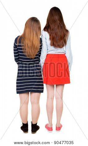 Two long haired friendly women .  backside view of person. Isolated over white background. Rear view people collection.  Two girlfriends girls are standing with their heads bowed to each other.