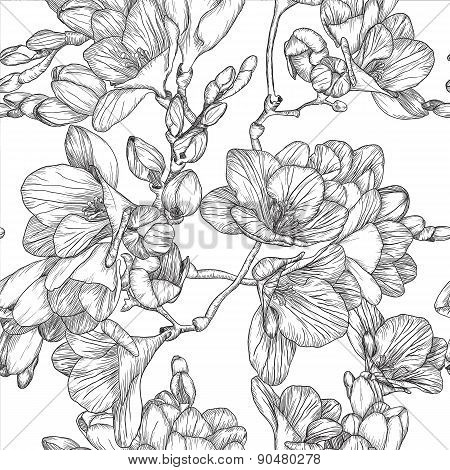 Black And White Seamless Pattern With Beautiful Bouquet Of Spring Freesias
