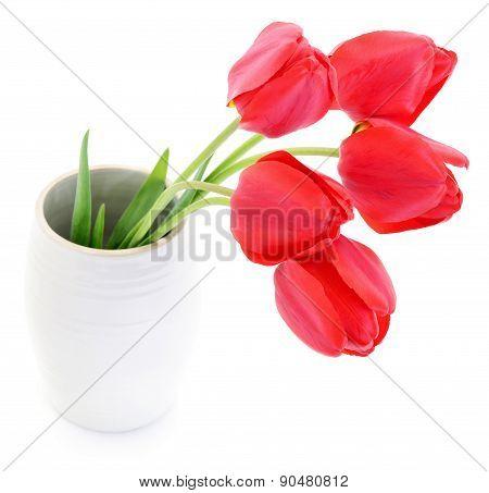 Tulips In Vase.