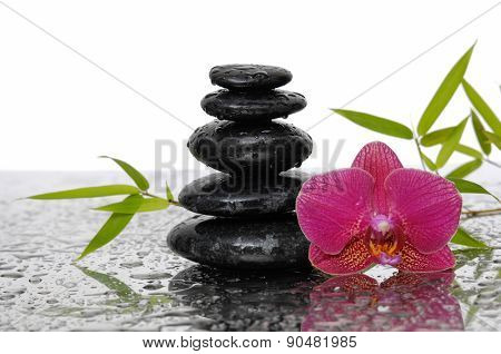 Still life with bamboo leaves and wet stones with orchid