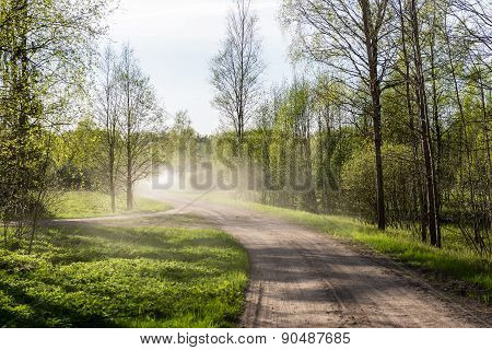 Empty Country Road In Forest With Dust