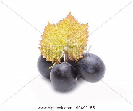 Red grapes with leaves isolated on white background