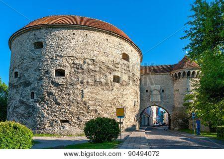 Fat Margaret Tower. Tallinn, Estonia