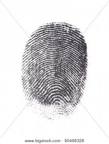 Single black fingerprint isolated on white