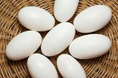 foto of crocodiles  - Pile of crocodile eggs in wicker basket - JPG