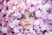 pic of pink eyes  - Face of small girl with opened blue eyes among pink flowers of japanese cherry blooming copyspase horizontal picture - JPG