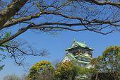 stock photo of castle  - Himeji Castle - JPG