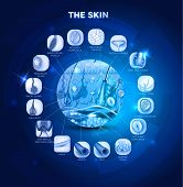 picture of fat cell  - Skin anatomy in the round shape beautiful blue design - JPG