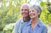 picture of old couple  - Happy old couple smiling in a park on a sunny day - JPG
