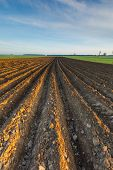 image of plow  - Plowed field landscape in calm polish countryside - JPG
