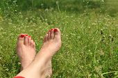 stock photo of barefoot  - Barefoot female feet on green field with flowers - JPG