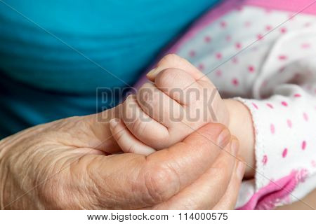 Old Woman Hand Holding Palm Baby
