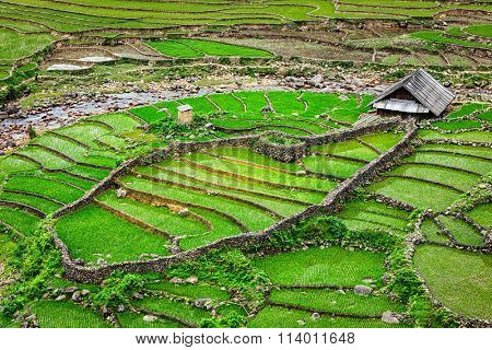 Farm shed in rice field terraces. Near Sapa, Vietnam