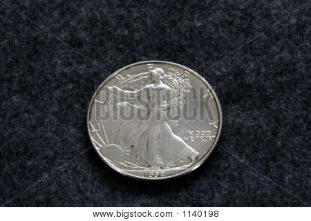 Old Silver Dollar 3