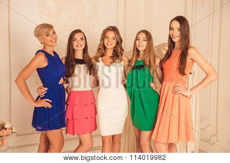 Cheerful Girlfriends In Dresses  Celebrating Hen Party