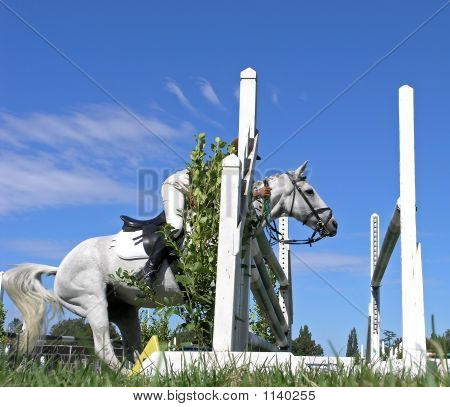 Horse Baulking At A Jump