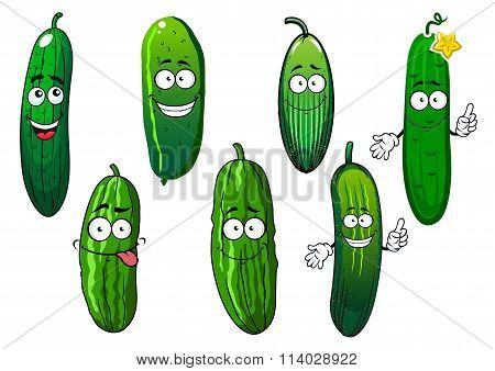 Cartoon ripe green organic cucumber vegetables