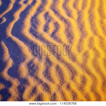 Africa The Brown Sand Dune In   Sahara Morocco Desert Line