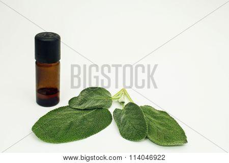 Aromatherapy sage oil