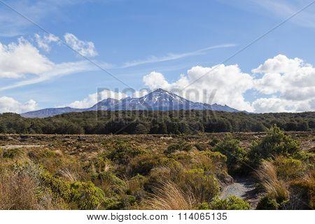 View of Mount Ruapehu