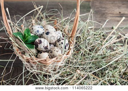Quail Eggs In A Basket With The Hay