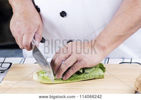 Chef Cutting Green Lettuce