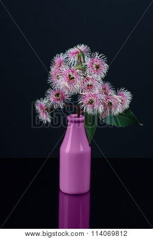 Elegant Bouquet Of White Pink Eucalyptus Flowers In A Purple Bottle